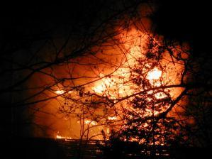 2012  foi o segundo pior ano de incêndios do último decénioFonte: Morguefile por Mikrash