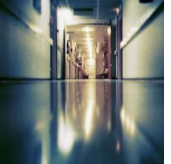 Até 1 de maio vão ser apresentados à tutela os planos regionais para a telemedicina(Fotografia do site: www.cienciapt.net)
