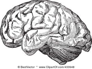 Vão tentar tirar fotografias complexas do cérebro.(Fonte:http://www.clipartof.com/)