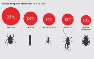 (Infografia: Público. Fonte: FAO)